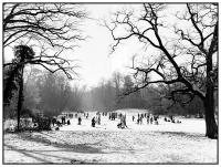 08_winter03